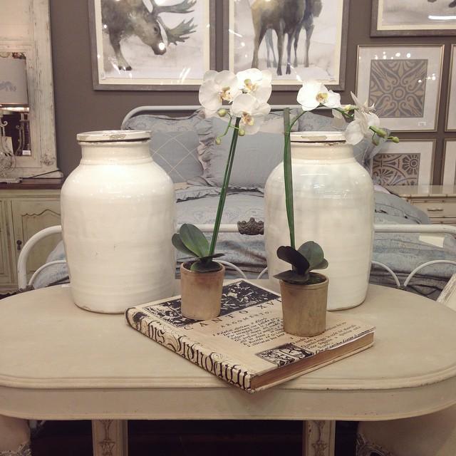 Vignette-ing this morning. #orchid #white #vignette #home #decor #tomball #vase #laurieshomefurnisjings