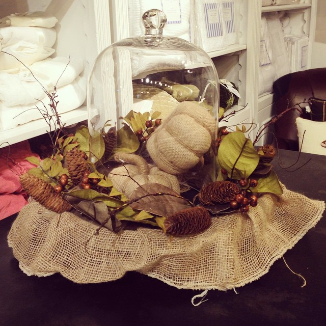 Come see all of our ideas for your harvest table! #thanksgiving #fall #instagood #harvest #pretty #lovely #pumpkin #laurieshomefurnishings