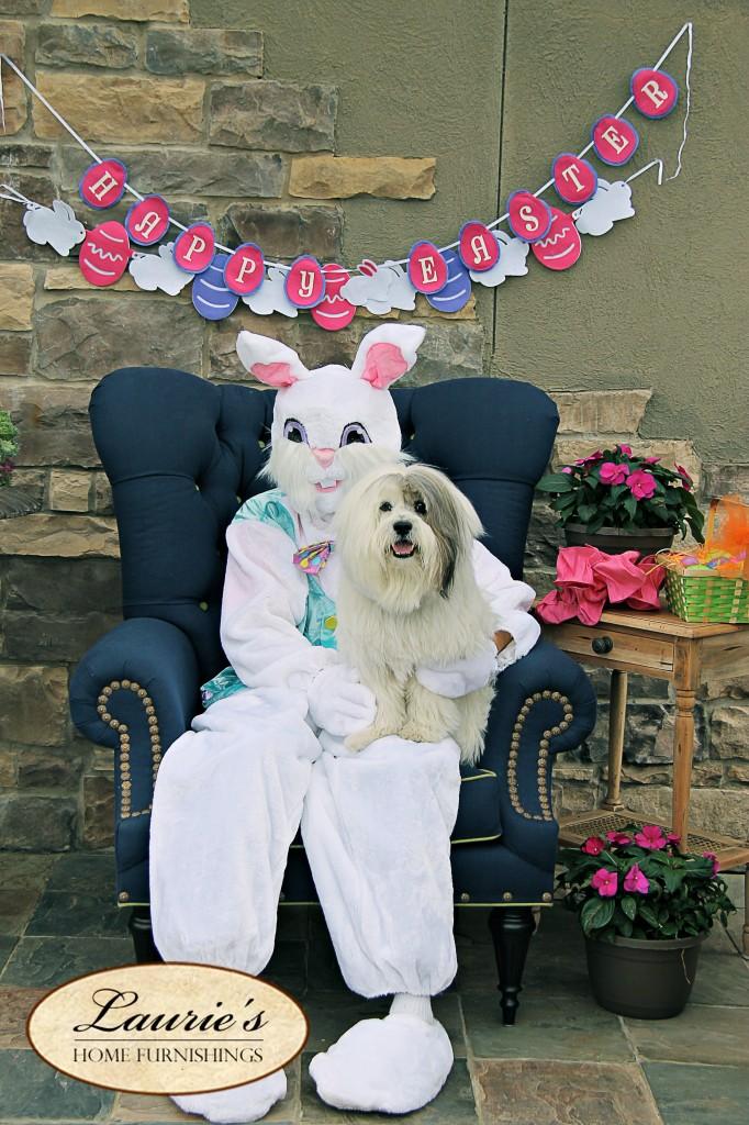bunny20